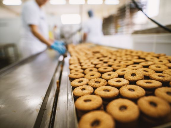 Food Auditing